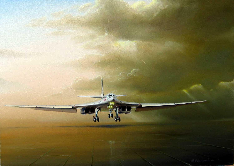 Фото самолетов дальней авиации 6